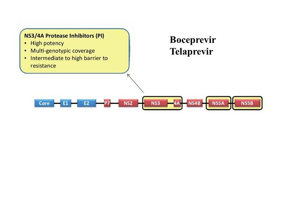 Boceprevir Telaprevir