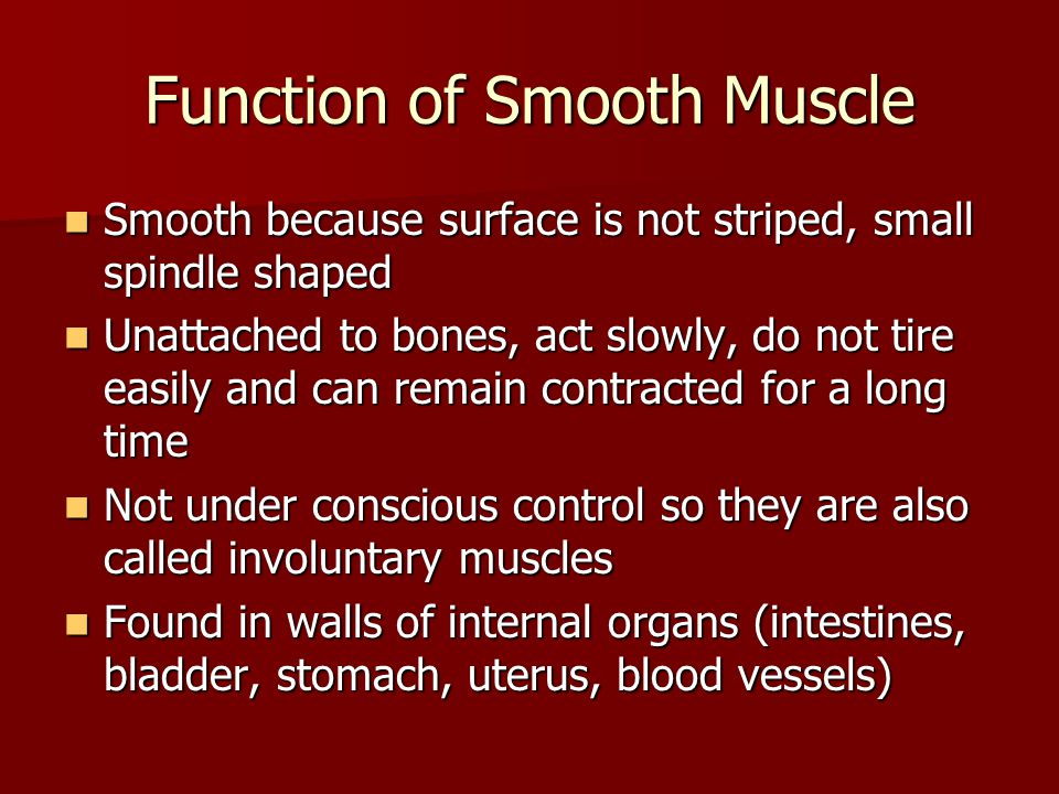 Function of Smooth Muscle Smooth because surface is not striped, small spindle shaped Smooth because surface is not striped, small spindle shaped Unat
