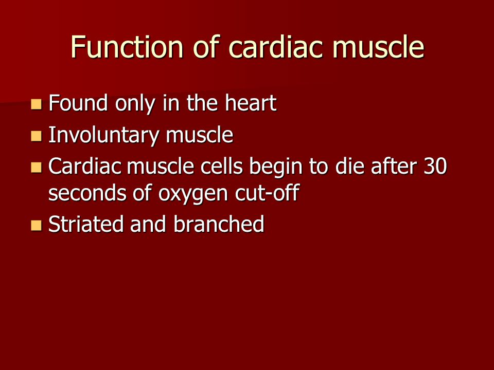 Function of cardiac muscle Found only in the heart Found only in the heart Involuntary muscle Involuntary muscle Cardiac muscle cells begin to die aft