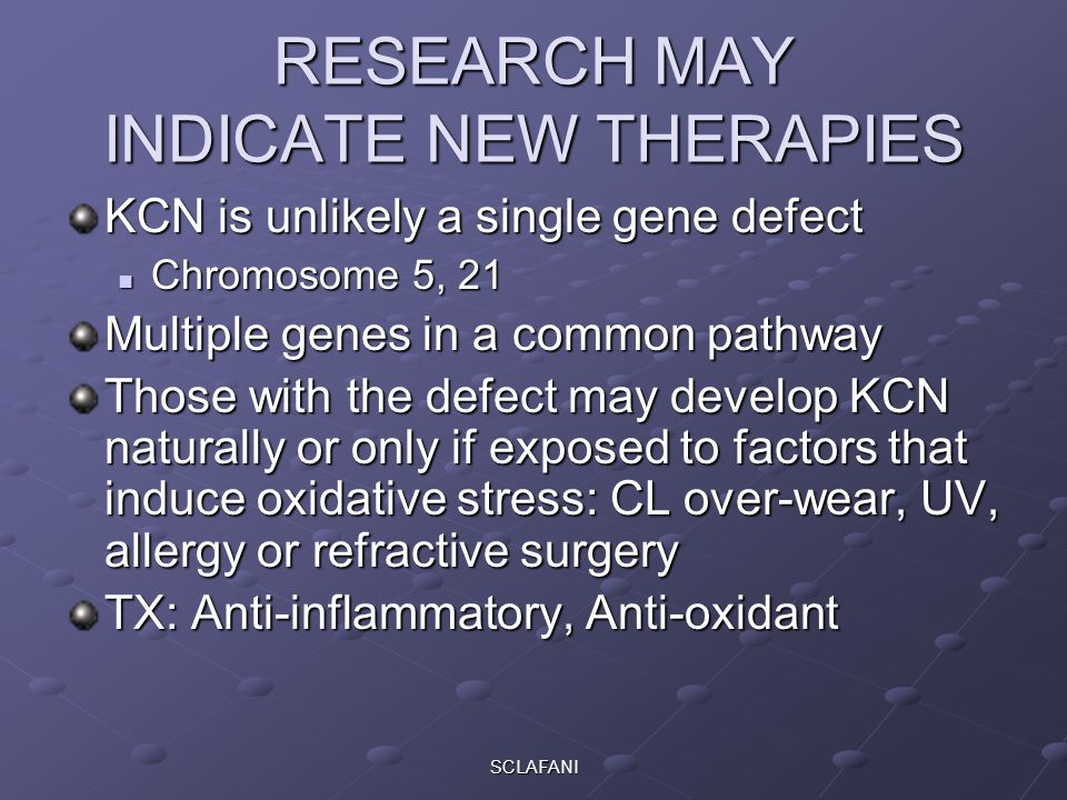 SCLAFANI RESEARCH MAY INDICATE NEW THERAPIES KCN is unlikely a single gene defect Chromosome 5, 21 Chromosome 5, 21 Multiple genes in a common pathway Those with the defect may develop KCN naturally or only if exposed to factors that induce oxidative stress: CL over-wear, UV, allergy or refractive surgery TX: Anti-inflammatory, Anti-oxidant