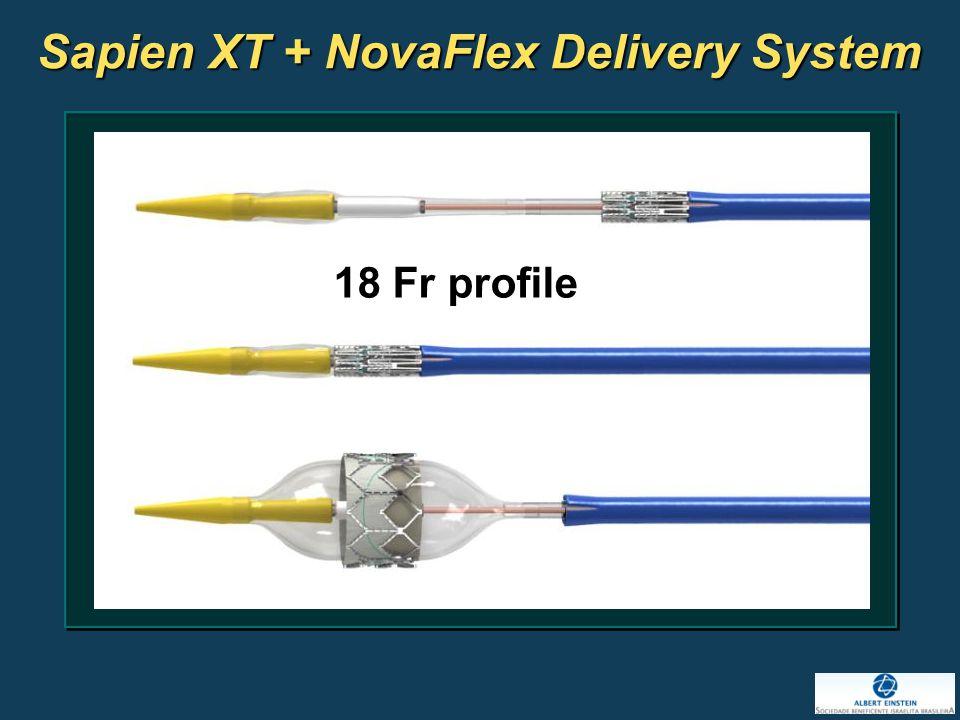 Sapien XT + NovaFlex Delivery System 18 Fr profile