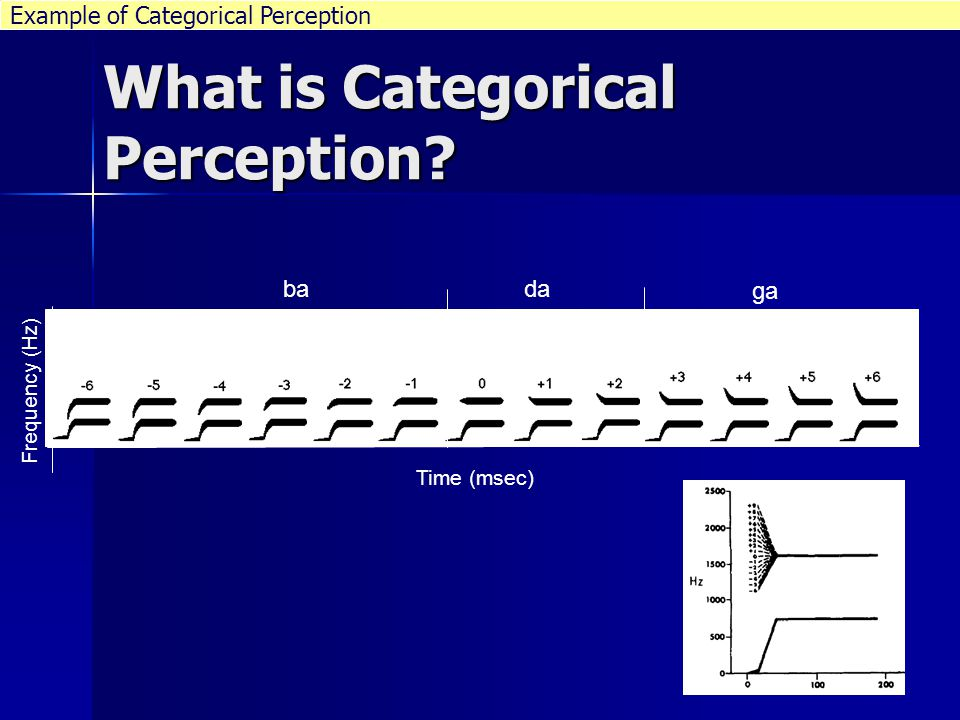 What is categorical Perception