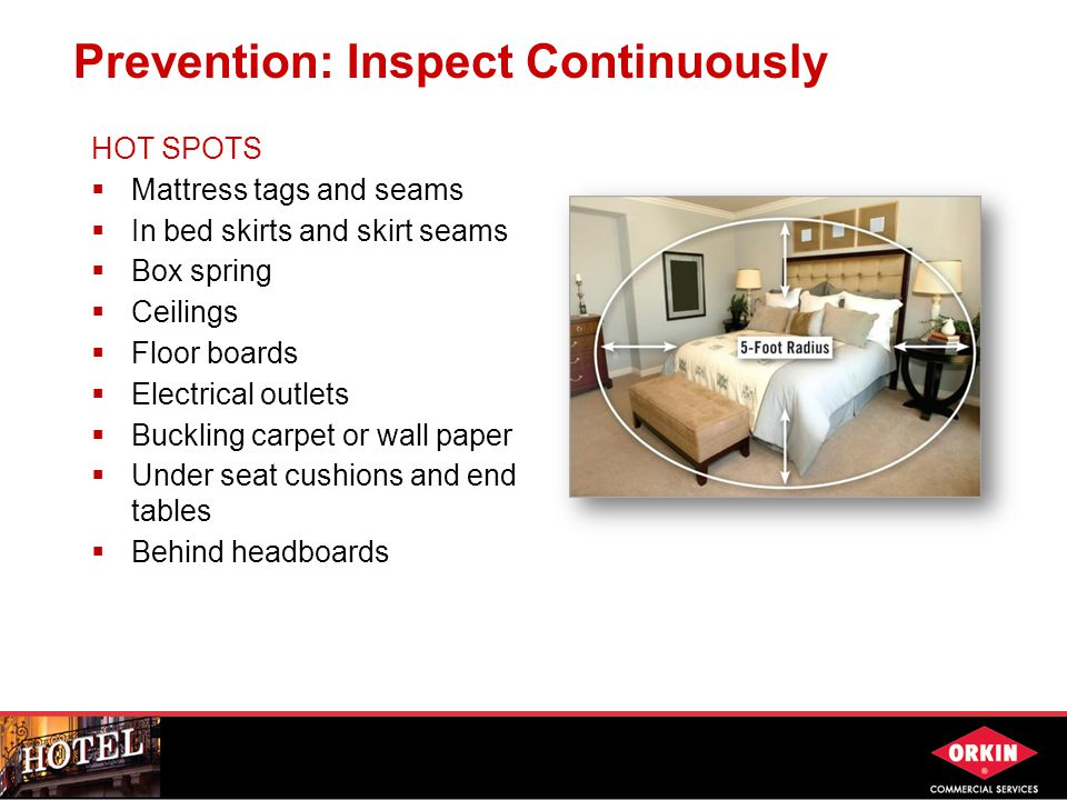 Prevention: Inspect Continuously HOT SPOTS  Mattress tags and seams  In bed skirts and skirt seams  Box spring  Ceilings  Floor boards  Electrical outlets  Buckling carpet or wall paper  Under seat cushions and end tables  Behind headboards