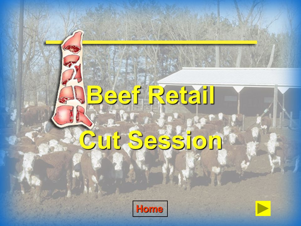 Beef Retail Cut Session Home