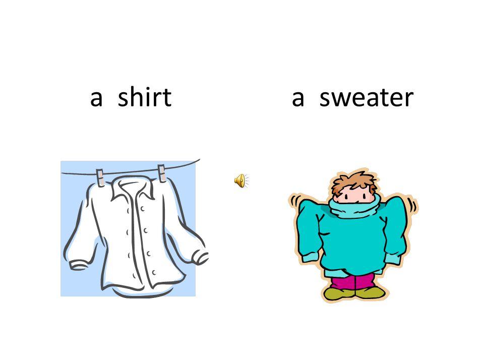 a shirta sweater