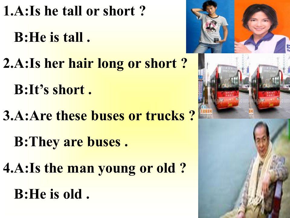 1.A:Is he tall or short .B:He is tall. 2.A:Is her hair long or short .