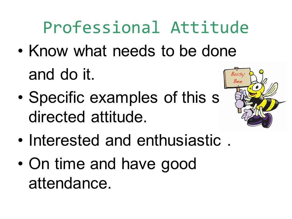 Professional Attitude Know what needs to be done and do it.