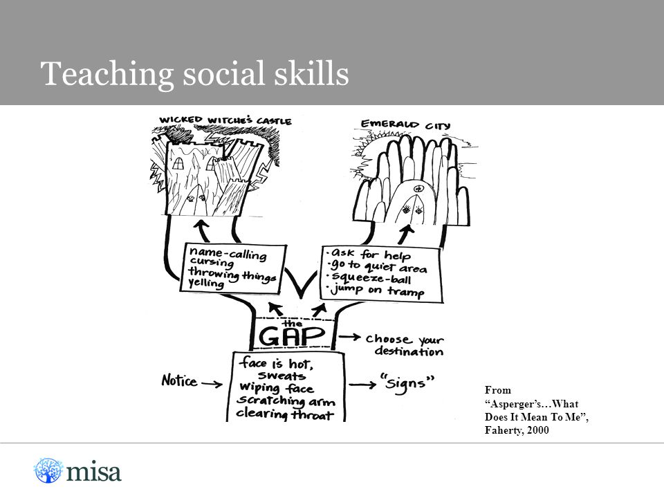 """Teaching social skills From """"Asperger's…What Does It Mean To Me"""", Faherty, 2000"""