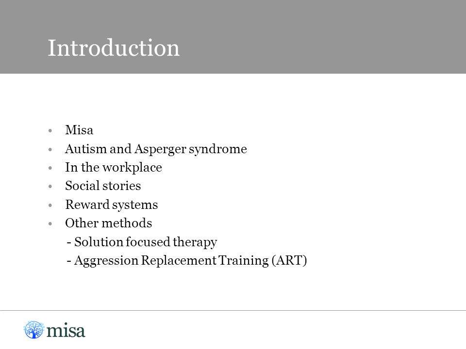 Introduction Misa Autism and Asperger syndrome In the workplace Social stories Reward systems Other methods - Solution focused therapy - Aggression Replacement Training (ART)