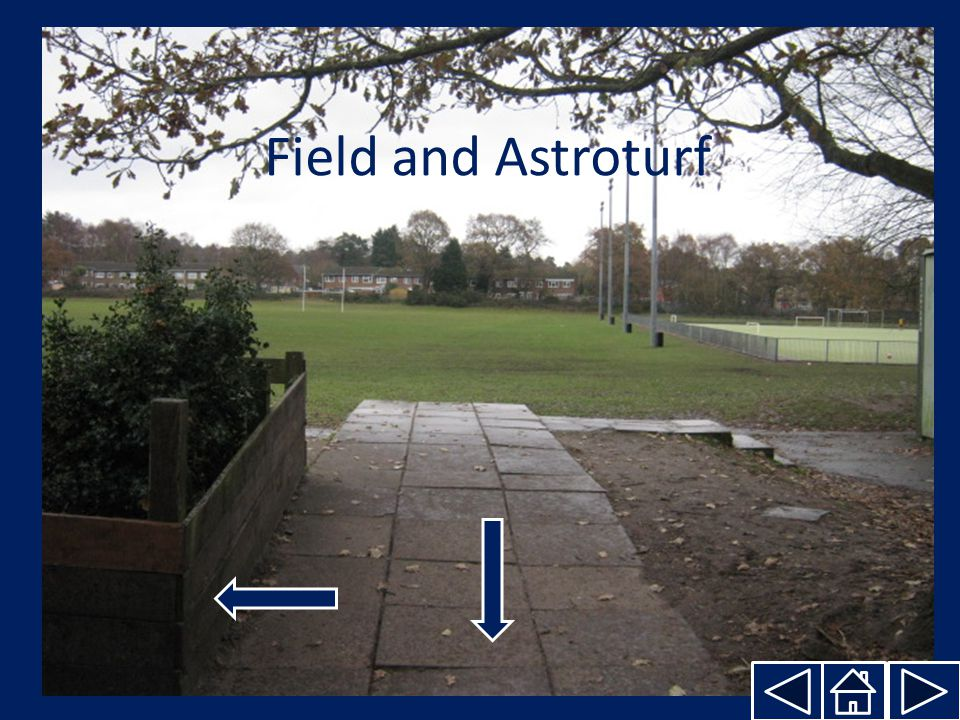 Field and Astroturf
