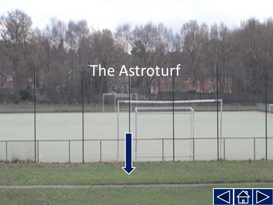 The Astroturf