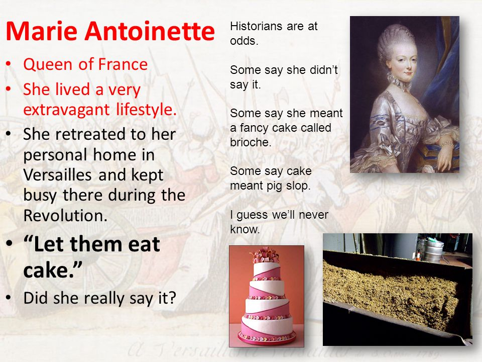 Marie Antoinette Queen of France She lived a very extravagant lifestyle. She retreated to her personal home in Versailles and kept busy there during t