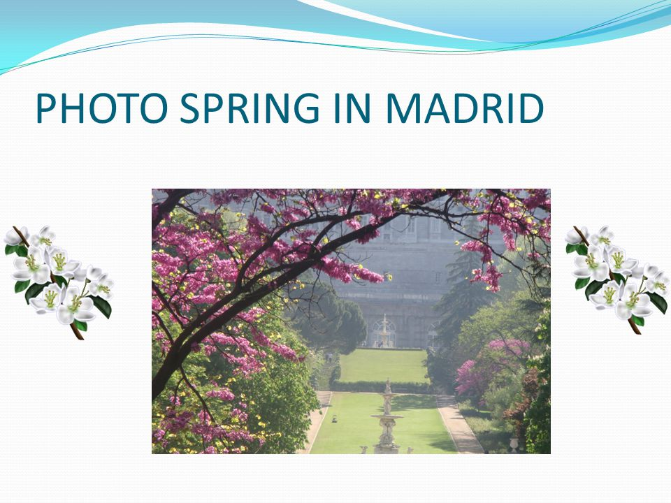 PHOTO SPRING IN MADRID