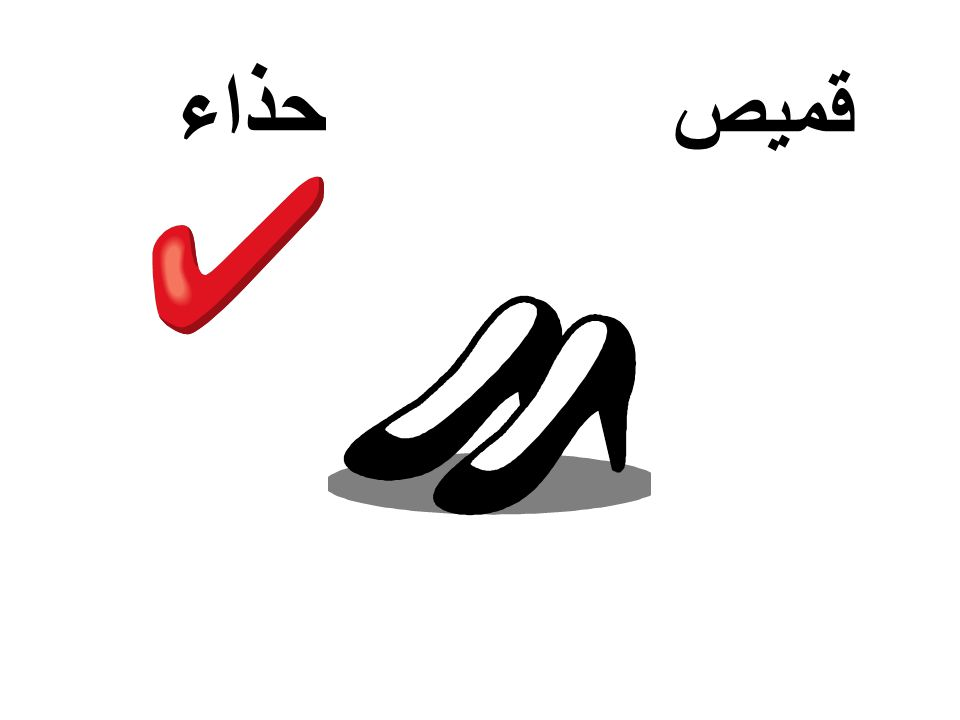 حذاء قميص
