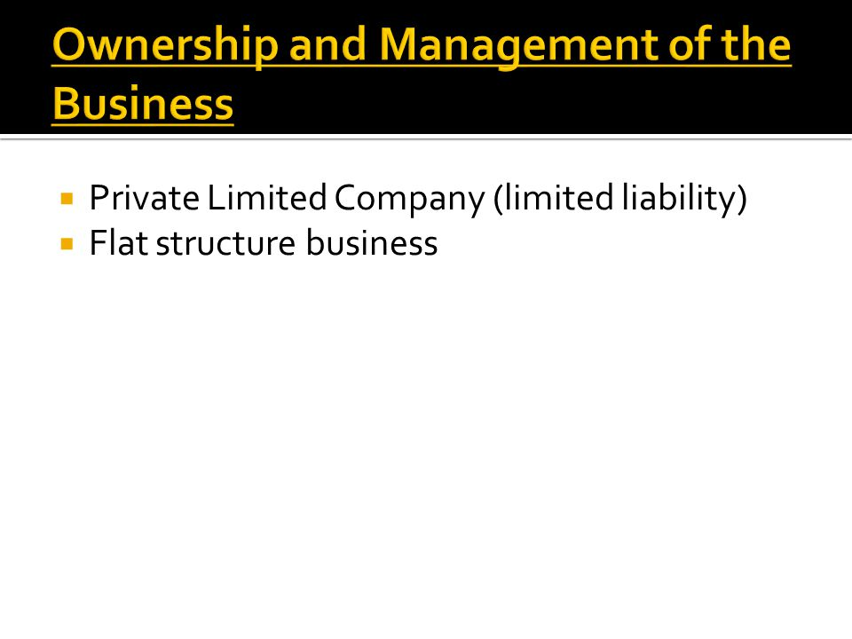  Private Limited Company (limited liability)  Flat structure business