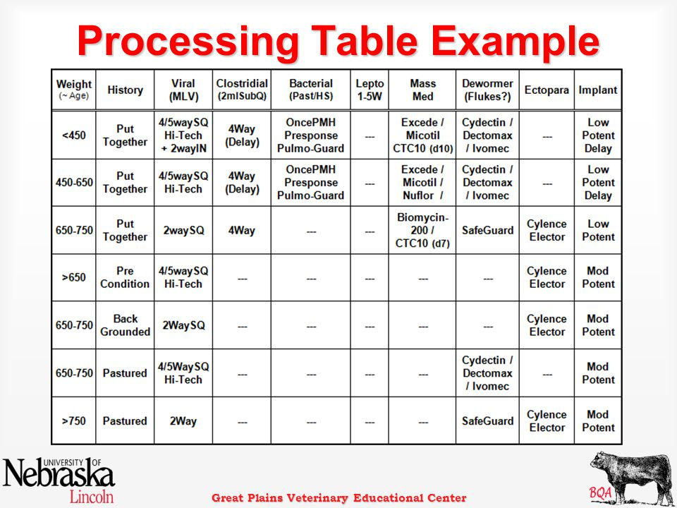 Great Plains Veterinary Educational Center Processing Table Example