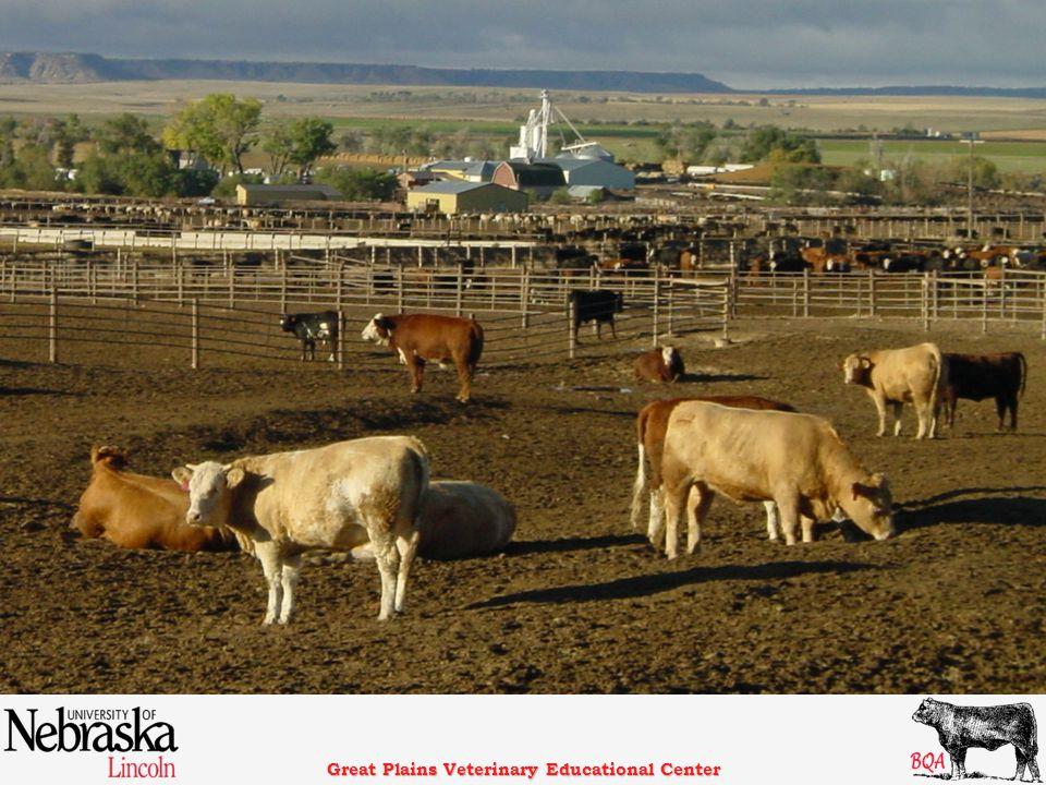 Great Plains Veterinary Educational Center