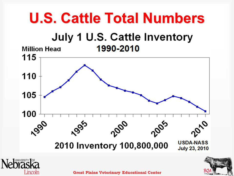 Great Plains Veterinary Educational Center U.S. Cattle Total Numbers