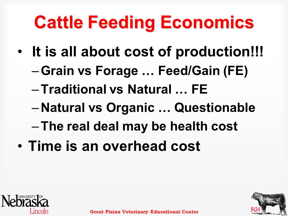 Great Plains Veterinary Educational Center Cattle Feeding Economics It is all about cost of production!!! –Grain vs Forage … Feed/Gain (FE) –Tradition