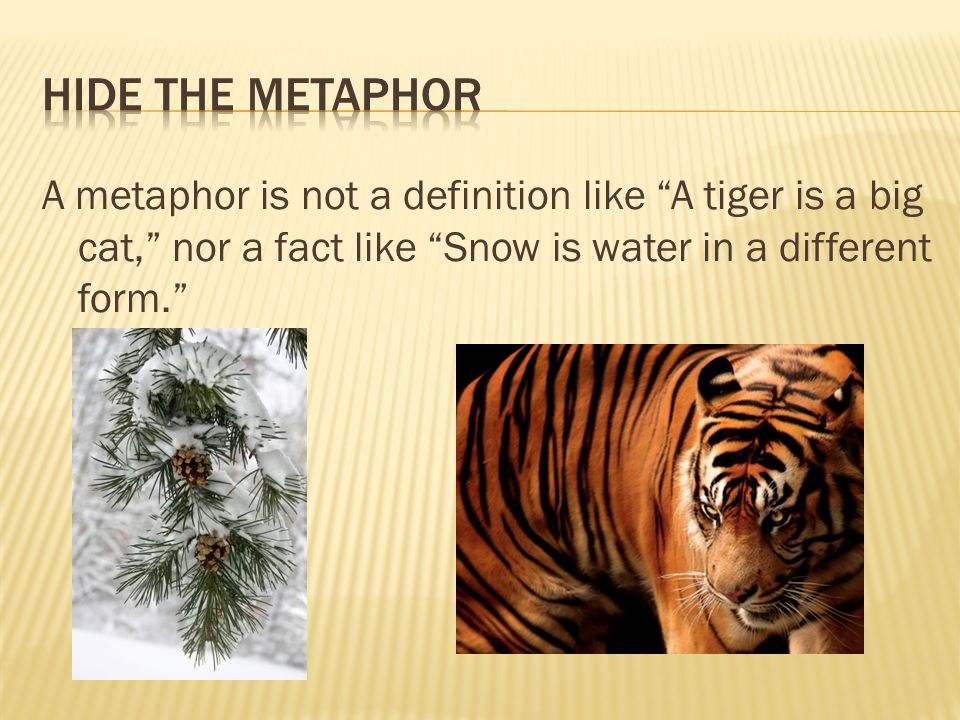 """A metaphor is not a definition like """"A tiger is a big cat,"""" nor a fact like """"Snow is water in a different form."""""""