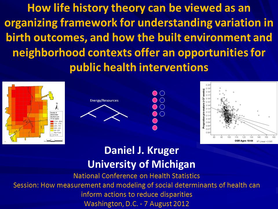 How life history theory can be viewed as an organizing framework for understanding variation in birth outcomes, and how the built environment and neig