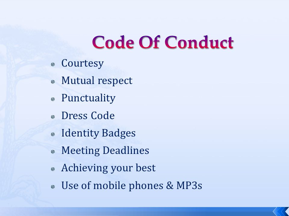  Courtesy  Mutual respect  Punctuality  Dress Code  Identity Badges  Meeting Deadlines  Achieving your best  Use of mobile phones & MP3s
