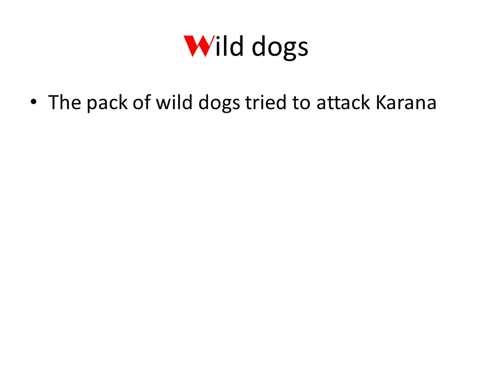 W ild dogs The pack of wild dogs tried to attack Karana
