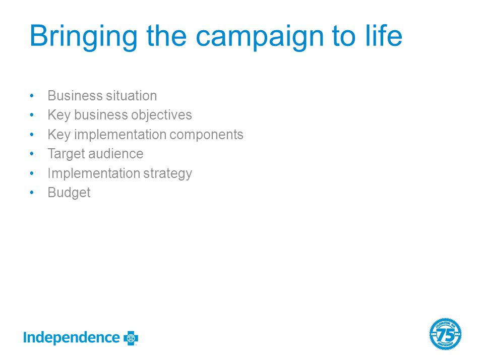 Bringing the campaign to life Business situation Key business objectives Key implementation components Target audience Implementation strategy Budget