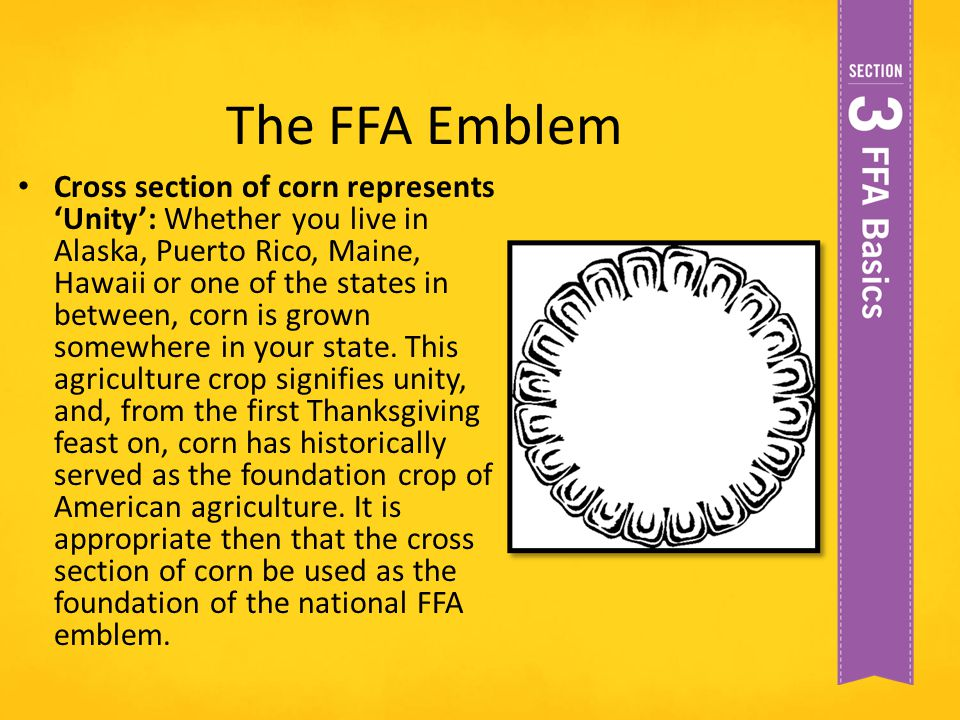 The FFA Emblem Cross section of corn represents 'Unity': Whether you live in Alaska, Puerto Rico, Maine, Hawaii or one of the states in between, corn