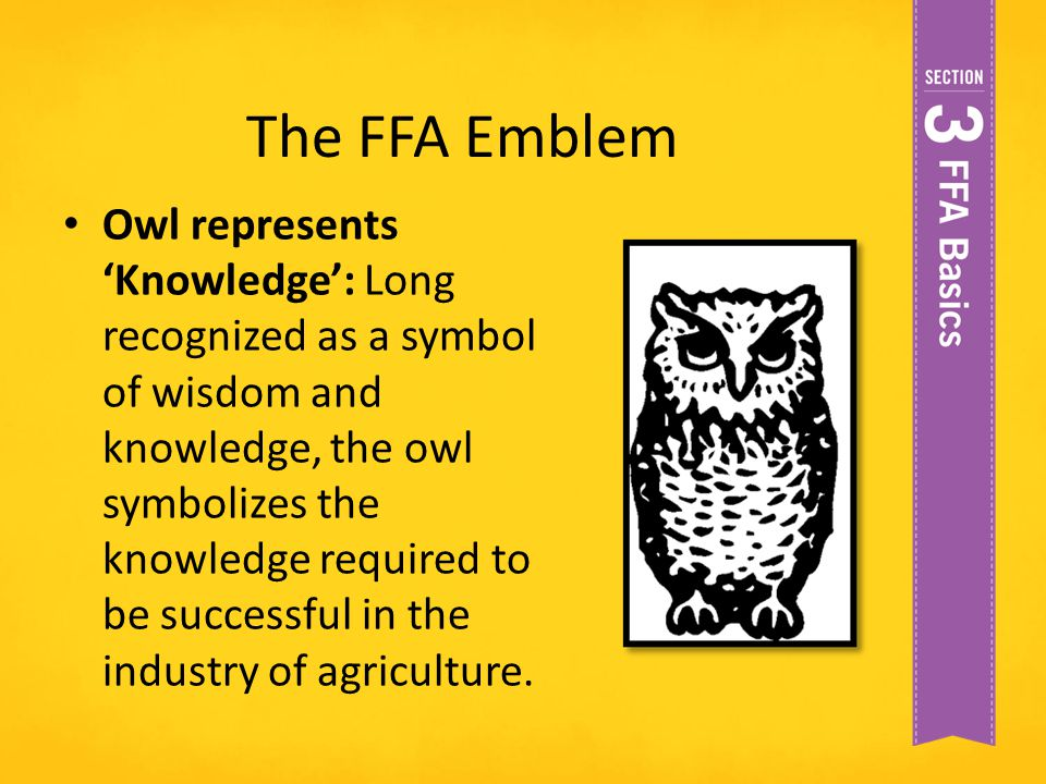 The FFA Emblem Owl represents 'Knowledge': Long recognized as a symbol of wisdom and knowledge, the owl symbolizes the knowledge required to be succes