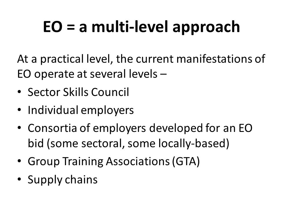 EO = a multi-level approach At a practical level, the current manifestations of EO operate at several levels – Sector Skills Council Individual employ