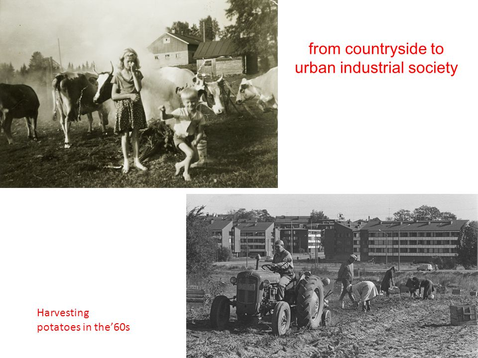 from countryside to urban industrial society Harvesting potatoes in the'60s