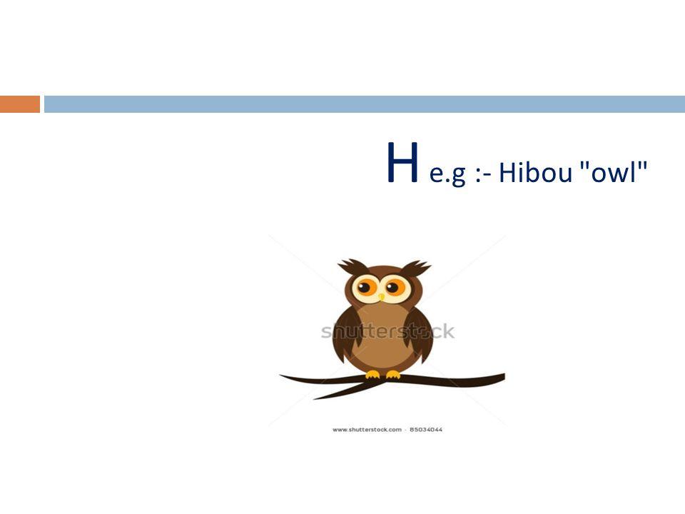 H e.g :- Hibou