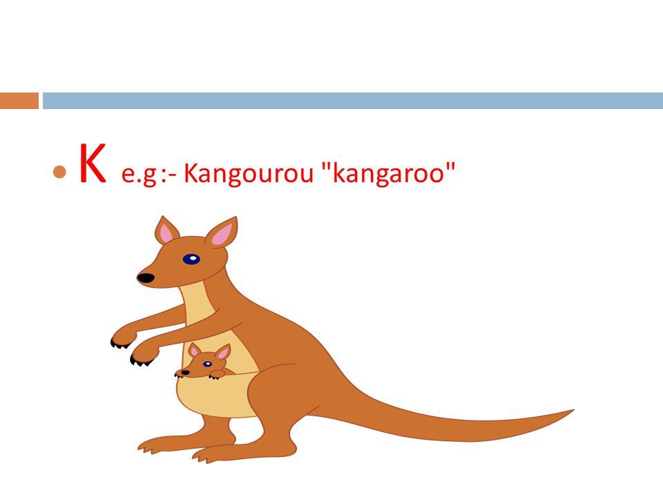  K e.g :- Kangourou