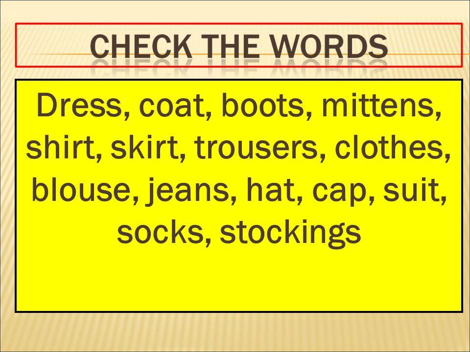 Dress, coat, boots, mittens, shirt, skirt, trousers, clothes, blouse, jeans, hat, cap, suit, socks, stockings