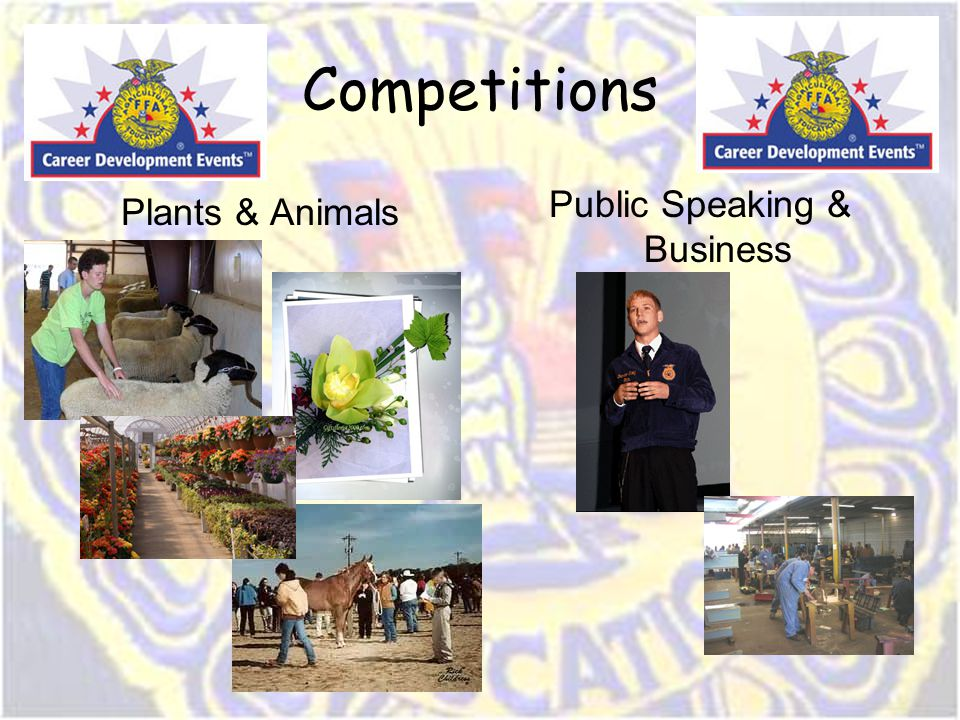 Competitions Plants & Animals Public Speaking & Business