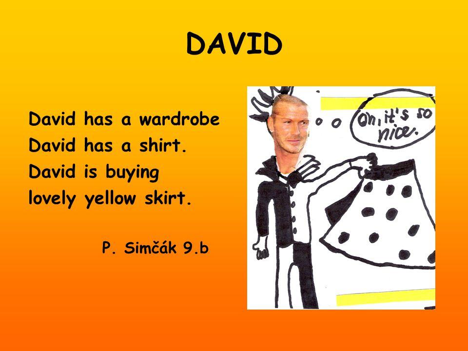 DAVID David has a wardrobe David has a shirt. David is buying lovely yellow skirt. P. Simčák 9.b