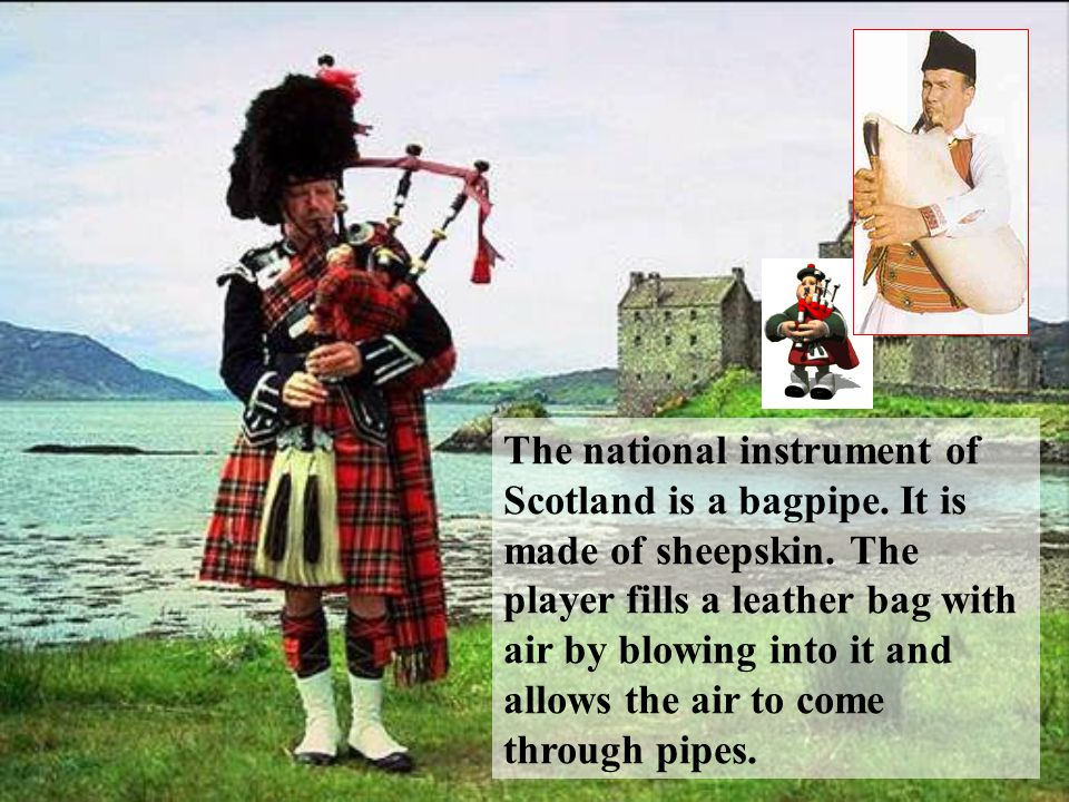 The national instrument of Scotland is a bagpipe. It is made of sheepskin. The player fills a leather bag with air by blowing into it and allows the a
