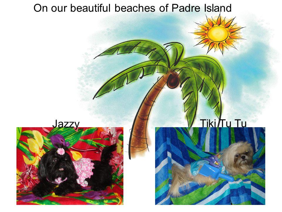 On our beautiful beaches of Padre Island Jazzy Tiki Tu Tu