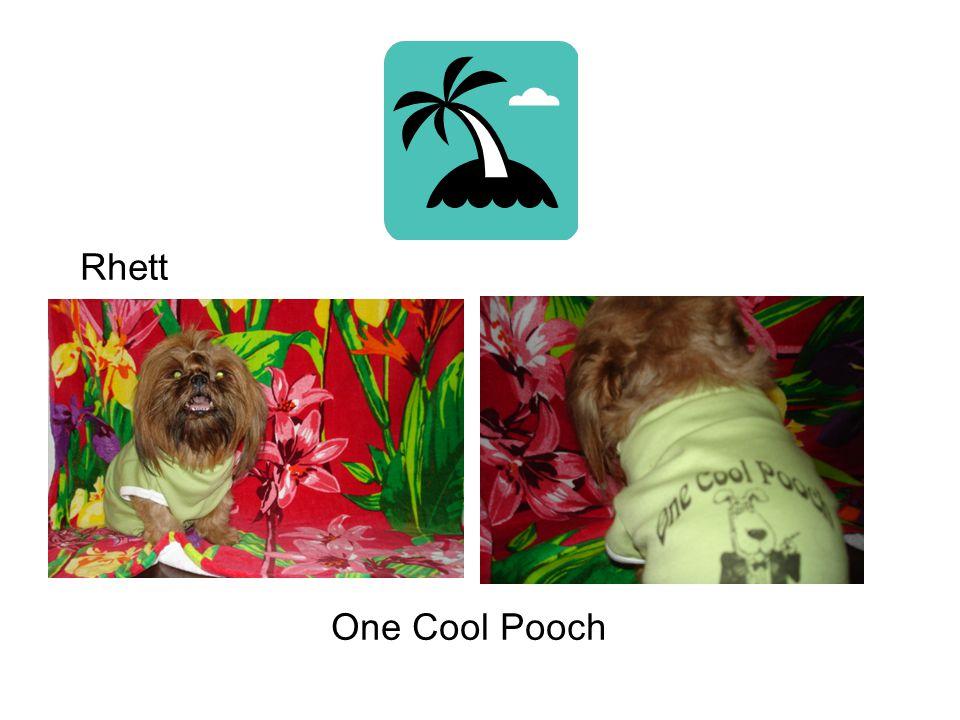 One Cool Pooch Rhett