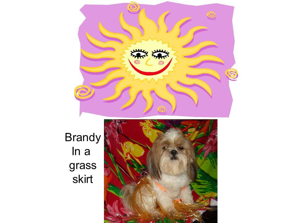Brandy In a grass skirt