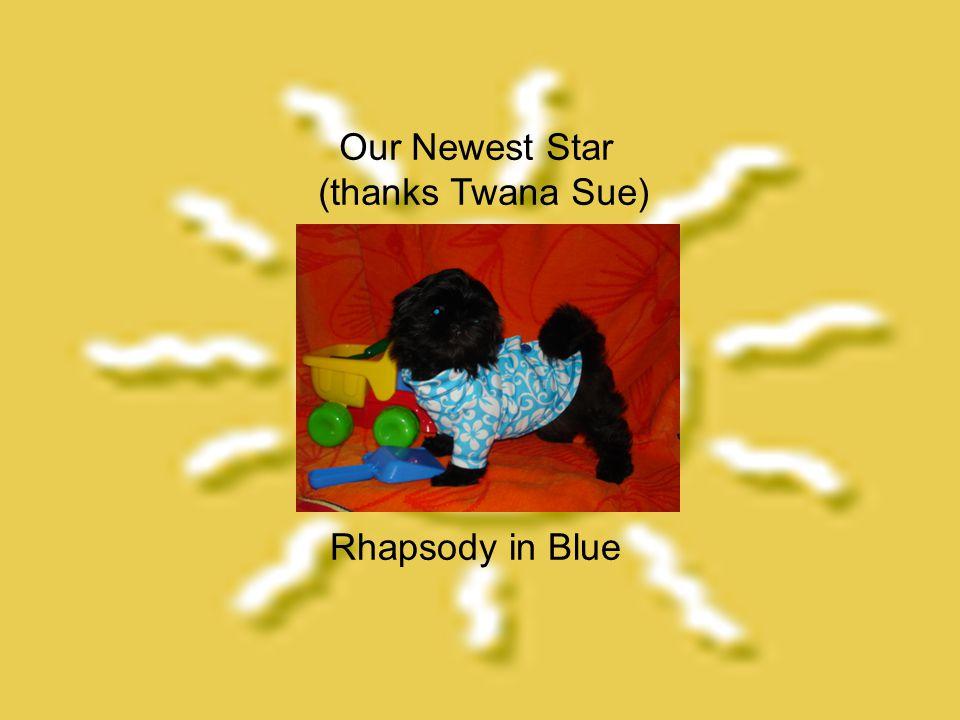 Rhapsody in Blue Our Newest Star (thanks Twana Sue)
