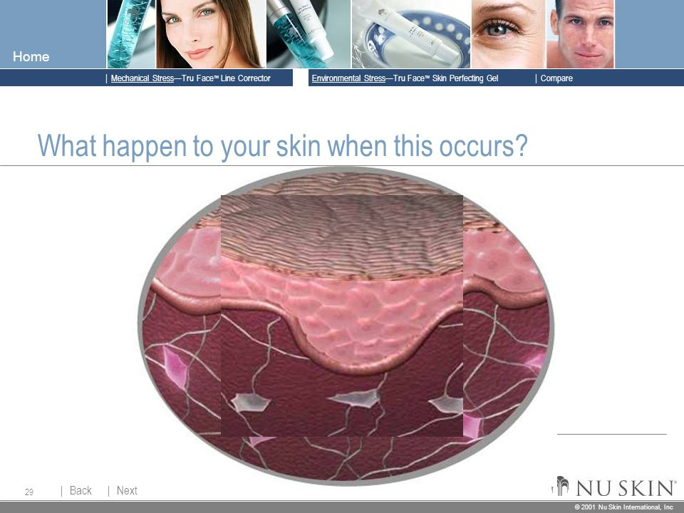 © 2001 Nu Skin International, Inc  Mechanical Stress—Tru Face ™ Line Corrector  Back Back  Next Next © 2001 Nu Skin International, Inc  Environmental Stress—Tru Face ™ Skin Perfecting Gel  Compare Home 29 What happen to your skin when this occurs?