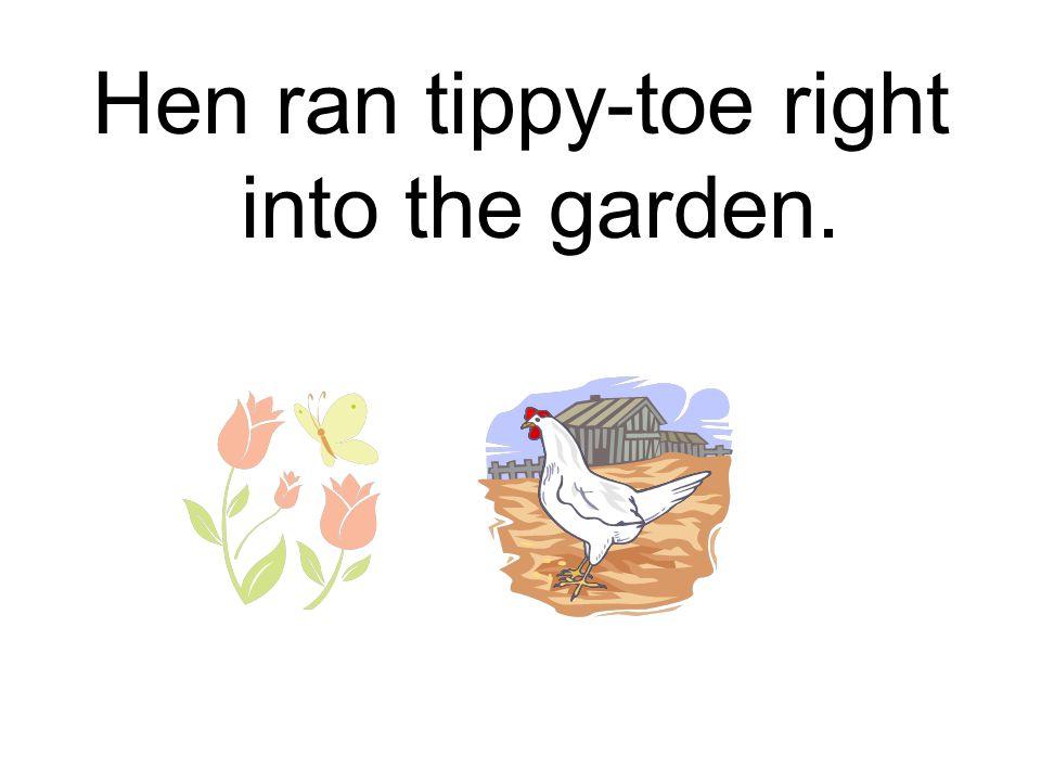 Hen ran tippy-toe right into the garden.