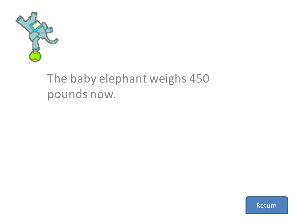 The baby elephant weighs 450 pounds now. Return