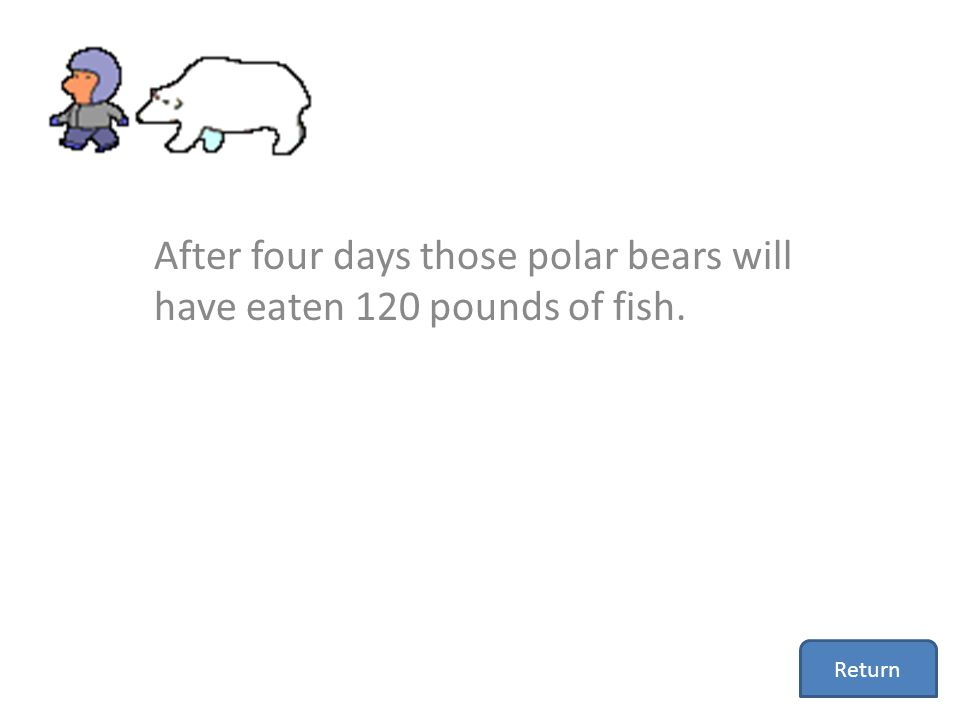 After four days those polar bears will have eaten 120 pounds of fish. Return