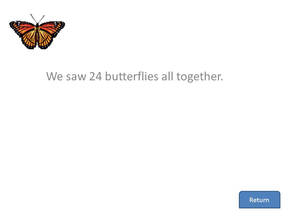 We saw 24 butterflies all together. Return