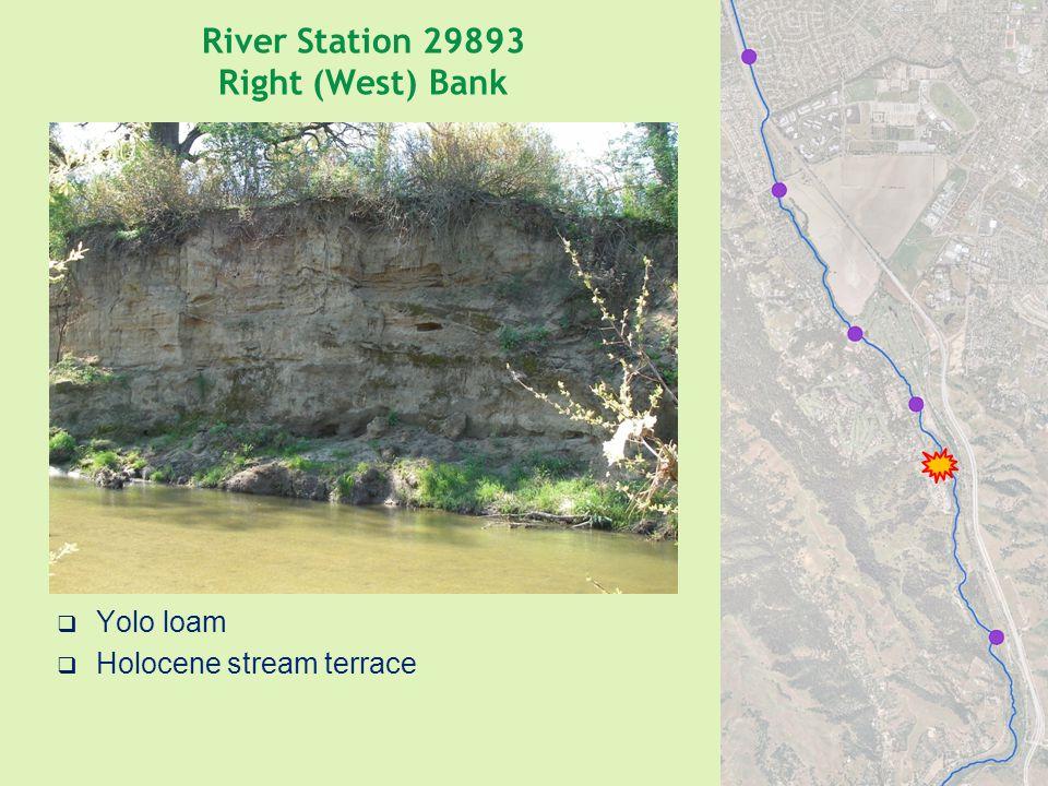 River Station 29893 Right (West) Bank  Yolo loam  Holocene stream terrace