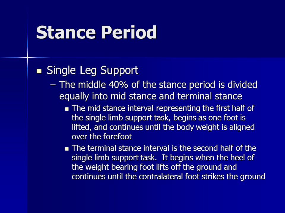 Stance Period Limb Advancement Limb Advancement –Pre-swing.