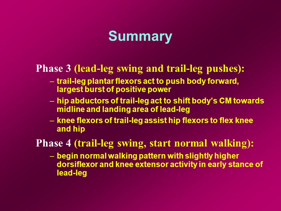 Summary Phase 3 (lead-leg swing and trail-leg pushes): –trail-leg plantar flexors act to push body forward, largest burst of positive power –hip abductors of trail-leg act to shift body's CM towards midline and landing area of lead-leg –knee flexors of trail-leg assist hip flexors to flex knee and hip Phase 4 (trail-leg swing, start normal walking): –begin normal walking pattern with slightly higher dorsiflexor and knee extensor activity in early stance of lead-leg